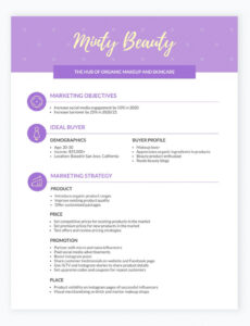 costum marketing plan outline template pdf