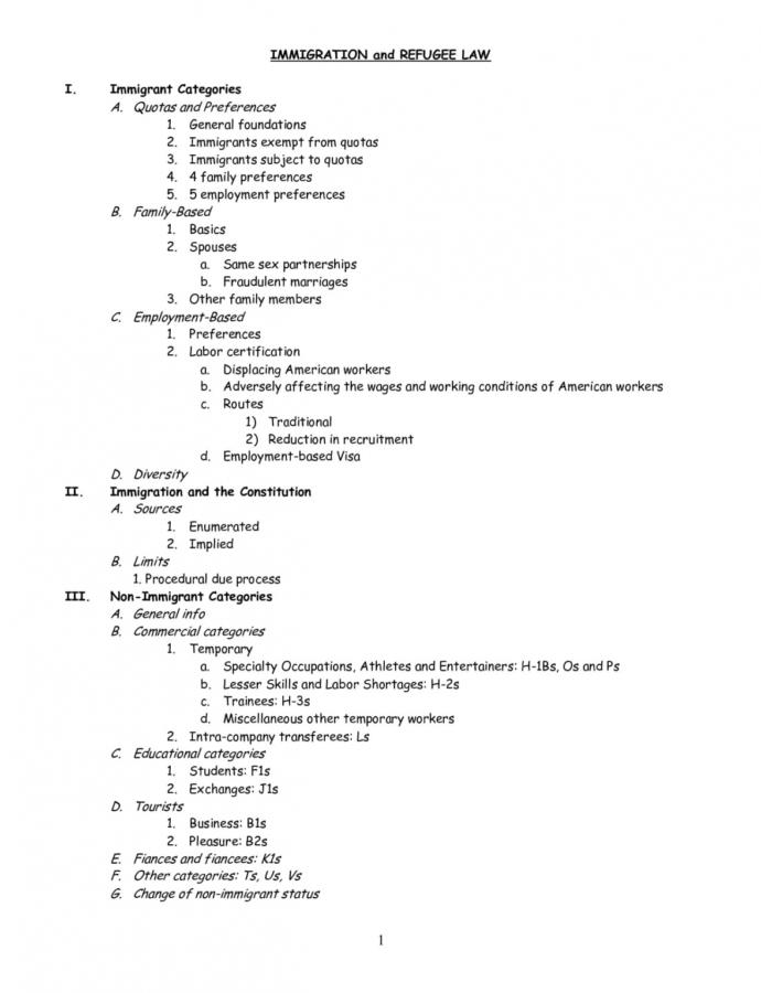 Costum College Essay Outline Template  Sample