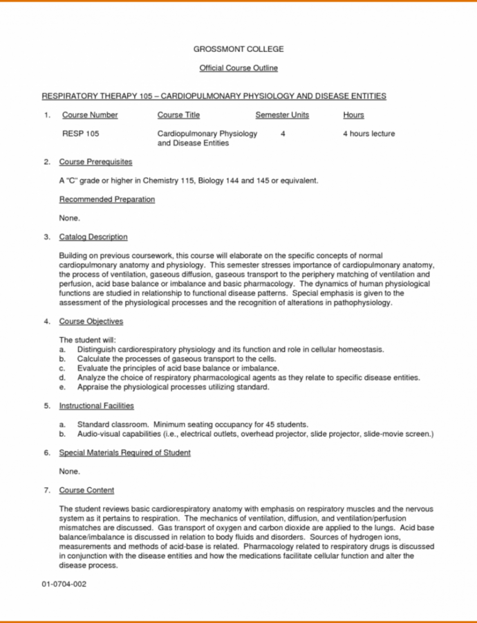 Printable College Essay Outline Template  Sample
