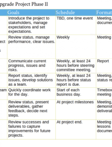 professional communication plan outline template word
