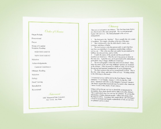 professional funeral service outline template  example