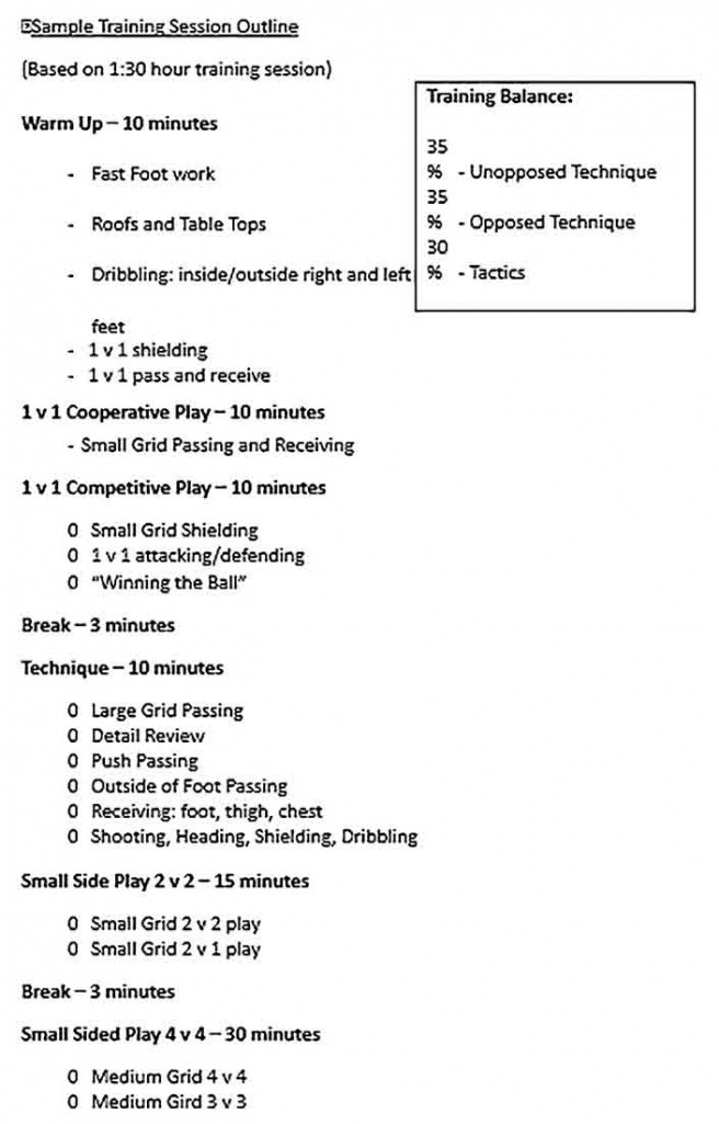 professional training class outline template  example