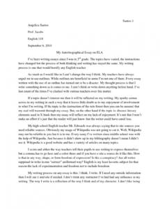 costum college narrative essay outline template  sample