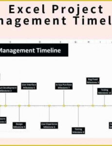 Costum Easy Project Timeline Template Doc