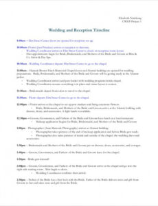 Costum Wedding Ceremony And Reception Timeline Template Pdf Example